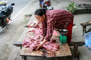 Vietnam - Fabien Garel